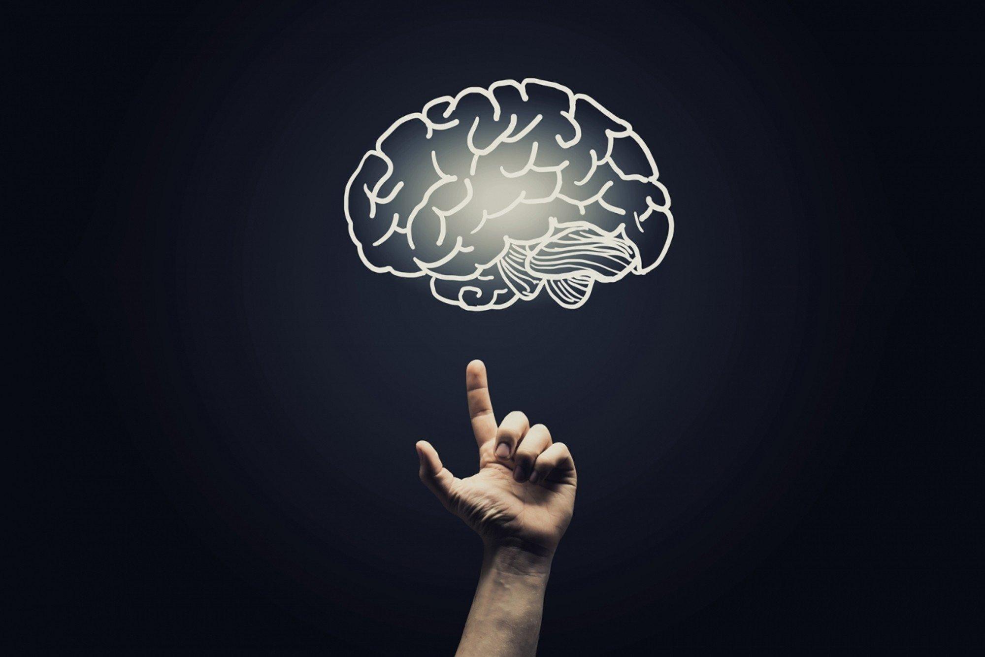 отличается психологический мозг картинки последних