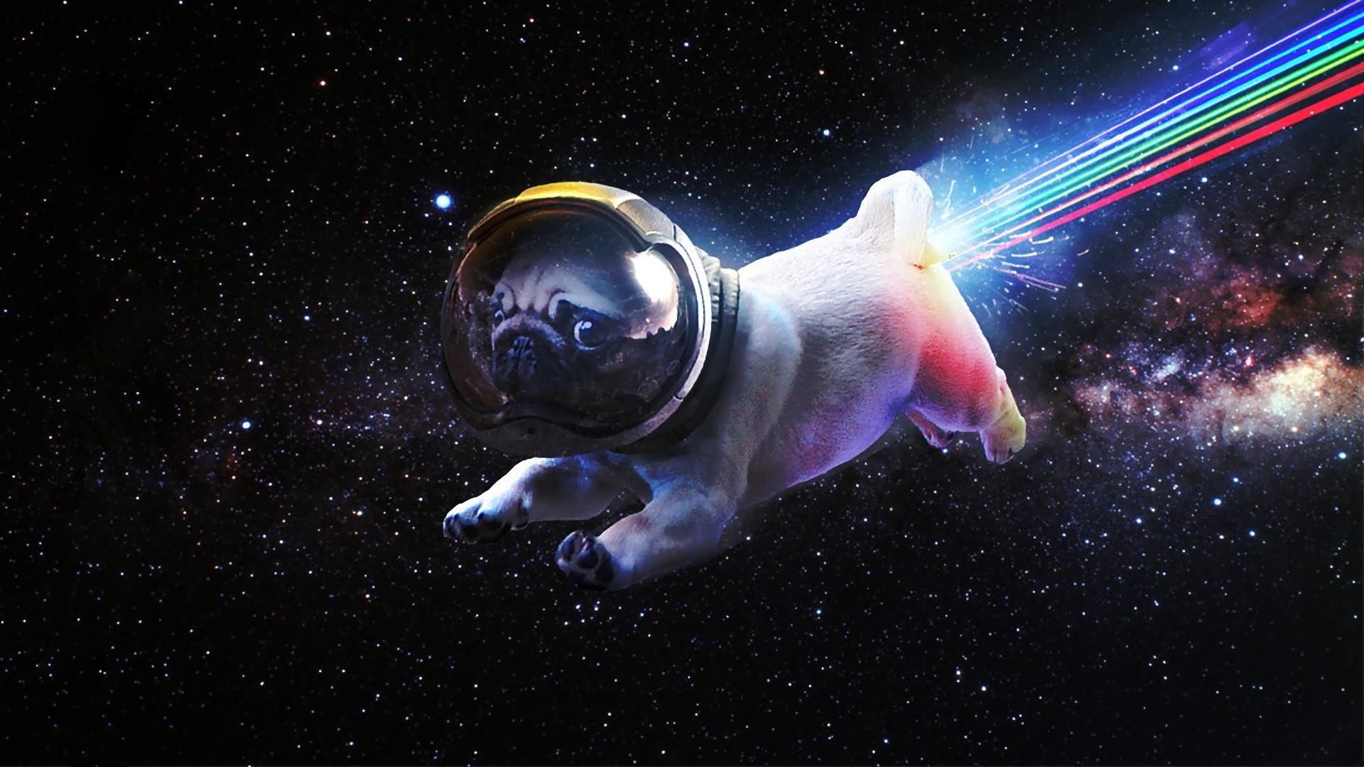 ней было картинка прикольного космоса рецепты категории