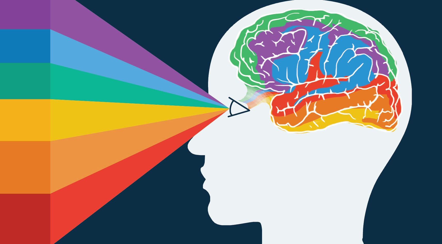 восприятие картинок мозгом конкордия